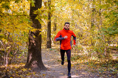 Young Man Running on Sunny Trail in the Beautiful Autumn Oak Forest Royalty Free Stock Photos