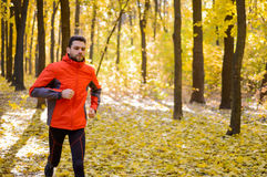 Young Man Running on Sunny Trail in the Beautiful Autumn Oak Forest Royalty Free Stock Image