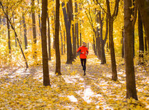 Young Man Running on Sunny Trail in the Beautiful Autumn Oak Forest Royalty Free Stock Photo