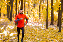 Young Man Running on Sunny Trail in the Beautiful Autumn Oak Forest Stock Images