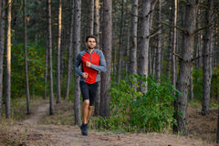 Young Man Running on the Trail in the Wild Pine Forest. Active Lifestyle Royalty Free Stock Photography