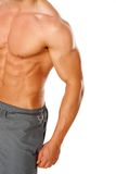 A young man's chest and abs on white Royalty Free Stock Photo