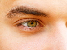 Young man's eyes Stock Images