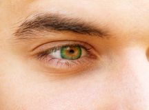 Young man's eyes Royalty Free Stock Photography