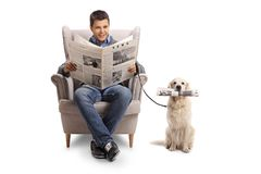Young man seated in an armchair reading a newspaper and a labrad. Or retriever with a newspaper isolated on white background Stock Images