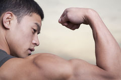 Young Man showing off his bicep muscles Royalty Free Stock Images