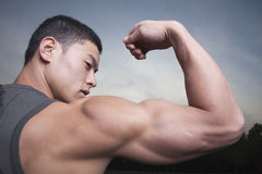 Young Man showing off his bicep muscles Royalty Free Stock Image