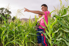 Young man showing something to his kid in a field of corn. Young men pointing his finger to something while carrying a kid Stock Photo