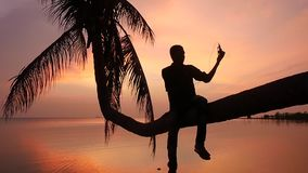 Young man sits on a palm tree on a background of beautiful sunset on the seashore listens to music with headphones and stock video