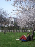 Young man sitting on grass and reading a book, in spring day in park Stock Photography