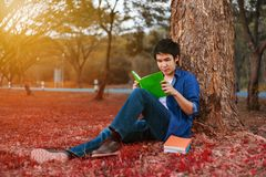 Young man sitting and reading a book in park Stock Photos