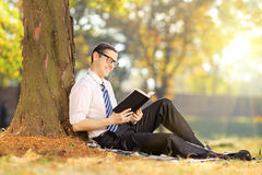Young man sitting and reading a book in park on a sunny day Royalty Free Stock Photo