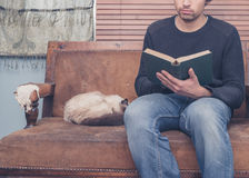 Young man sitting on sofa with cat is reading Royalty Free Stock Photos