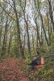 Man on bench in forest Stock Image