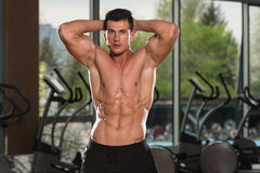Young Man With Six Pack stock image