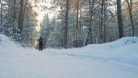 A young man is skiing in the winter forest. stock video footage