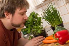 Young man is smelling on the basil Royalty Free Stock Photography
