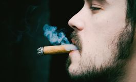 Young man smoking cigar Stock Photos