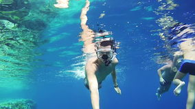 Young Man Snorkeling on Colorful Reef in Red Sea, Egypt stock footage