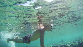 Young Man Snorkeling on Colorful Reef in Red Sea, Egypt stock video