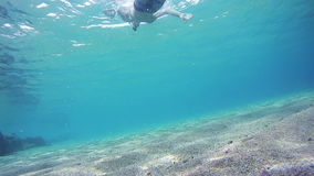 Young Man Snorkeling and Floating Through the Frame, Underwater View in Red Sea, Egypt. Man dives into the depths of the blue water, with a mask and a tube stock video footage