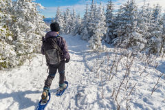 Young man snowshoeing in winter, in the Quebec eastern township stock images
