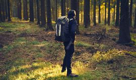 Young man in silent forrest with sunlight Stock Photos