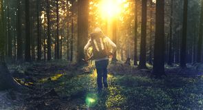 Young man in silent forrest with sunlight Royalty Free Stock Photography