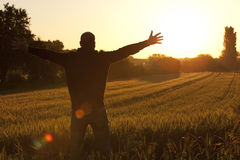 Young man standing in summer Landscape with Wheat Royalty Free Stock Photo