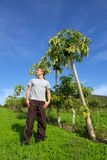 Young man stands next to pawpaw tree Stock Photography
