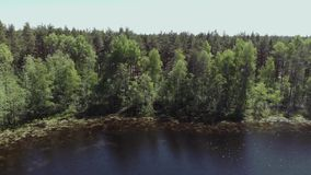 A young man stands on the shore of a forest lake. The camera moves up and away from the young man standing on the shore stock video footage