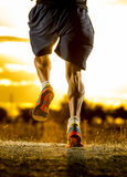 Young man strong legs off trail running at amazing summer sunset in sport and healthy lifestyle. Close up image of young man strong legs off trail running at Royalty Free Stock Photo