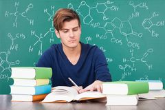 Young man studying Royalty Free Stock Photo