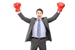 Young man in a suit and boxing gloves celebrating Royalty Free Stock Image
