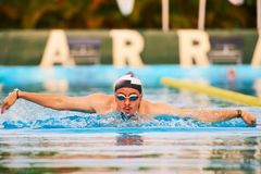 Young man swim butterfly style royalty free stock photo