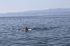 Young man swimming in Adriatic sea Stock Images