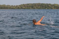 Young man swimming in the lake. Young man is swimming fast in the lake on a sunny and warm day royalty free stock image