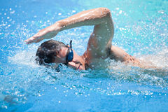 Young man swimming the front crawl/freestyle Stock Image
