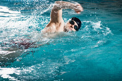 Young man swimming the front crawl Stock Image