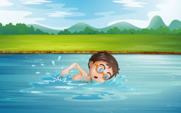A young man swimming Stock Photos