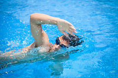 Young man swimming. In a pool Stock Photography