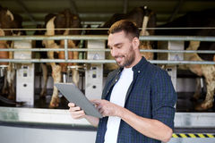 Young man with tablet pc and cows on dairy farm Royalty Free Stock Image