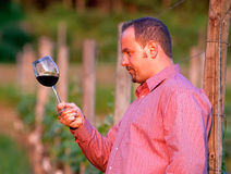 Young man is tasting red wine Stock Photography