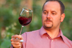 Young man is tasting red wine Stock Images
