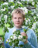 Young man, teenager standing and apple tree. Royalty Free Stock Photo