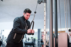 Young man training biceps at gym Stock Images