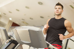 Young man training in gym Stock Photography