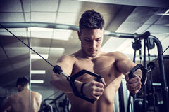 Young man training on gym equipment Stock Photos