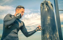 Young man training with punching bag Royalty Free Stock Image