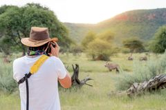 Young man traveler taking photo of wildlife animals. Young man traveler and photographer taking photo of Oryx, a type of wildlife animal in African safari Royalty Free Stock Photography